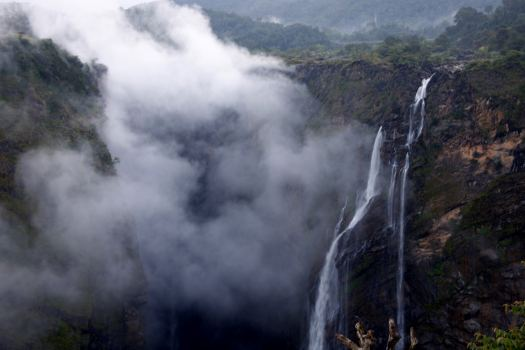 PAYANIGA - Jog Falls