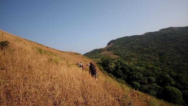 PAYANIGA - Landscapes of Narasimha Parvatha